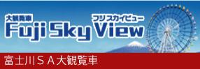fuji_sky_view
