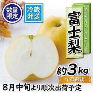 fujinashi01
