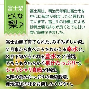 fujinashi02