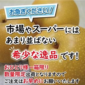 fujinashi03