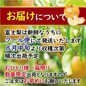 fujinashi04