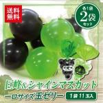 miti-fujikawarakuza_mm-j6j6